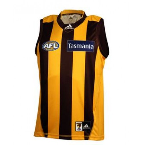 Hawthorn Hawks 2015 Home Guernsey - Youths