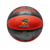 Wilson Wildcats Basketball