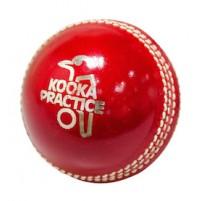 Kookaburra Practice Cricket Ball 156g