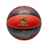 Wilson Wildcats Basketball