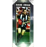Dane Swan
